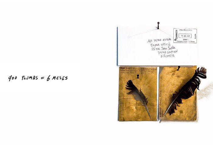 Volver-a-volar-ana-matey-2012-01w